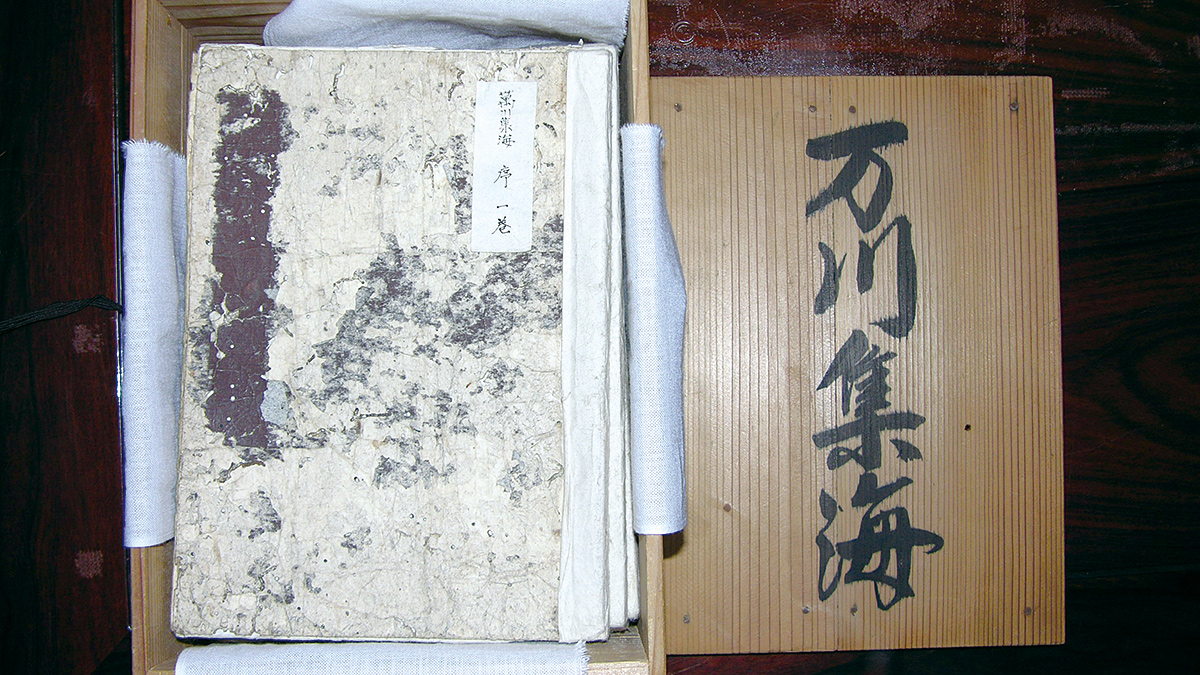 Book of Ninjutsu